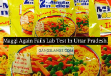 Maggi Again Fails Lab Test In UP